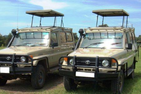 safari-cruiser-front
