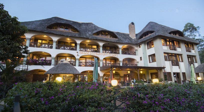 BirdNest Resort